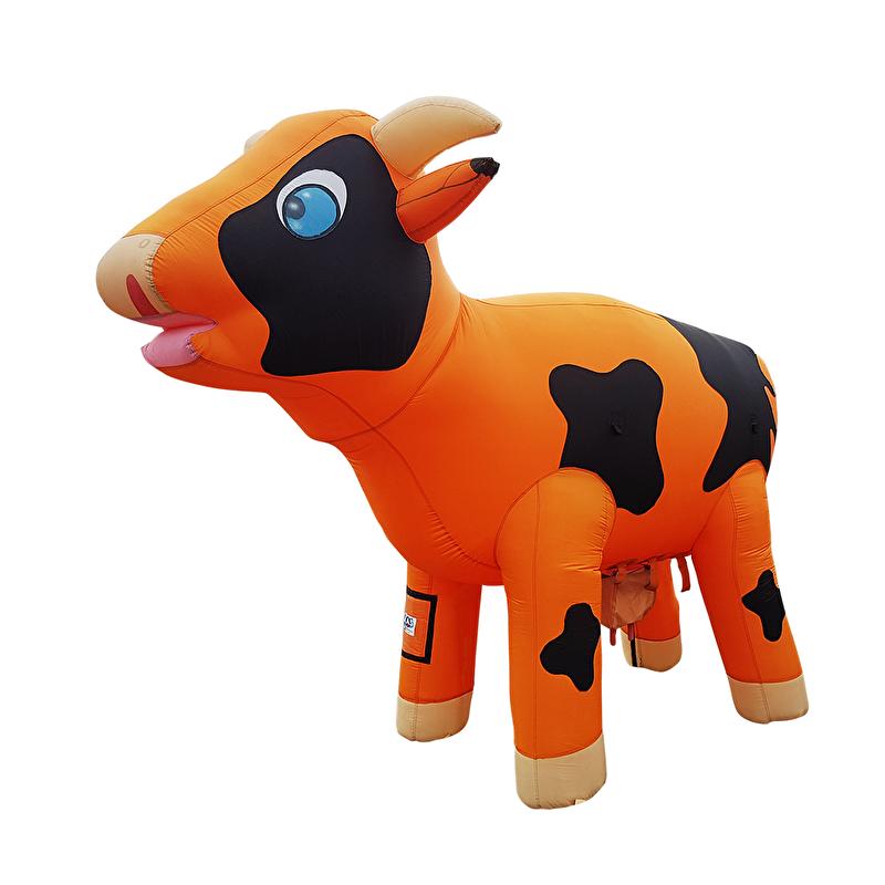 Ranjakoe Oranje