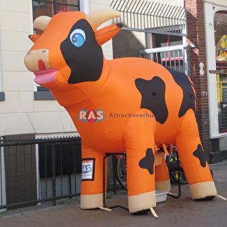 Ranjakoe huren. Ras attractieverhuur Bergen op Zoom.